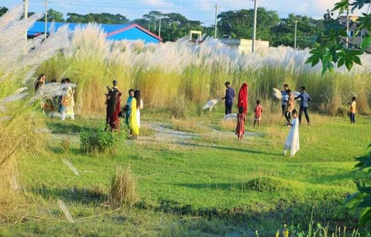 ঝালকাঠি বিসিক শিল্পনগরীতে প্রকৃতির এমন অপরূপ সাজে সাজানোয় অনেকেই ছুটছেন বিনোদন স্পট হিসেবে। ছবি: মো. আতিকুর রহমান