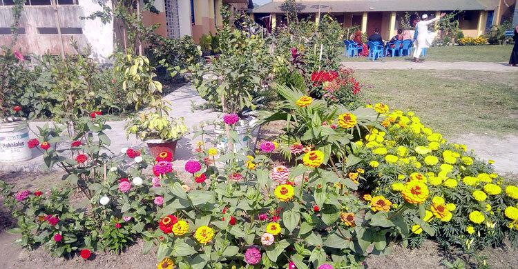 garden-in-(1)