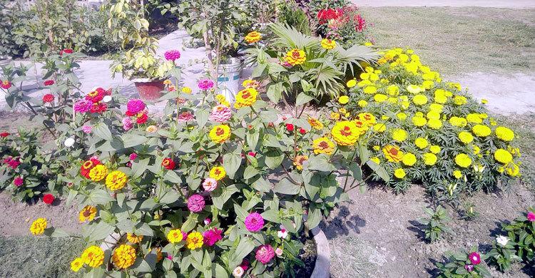 garden-in-(2)