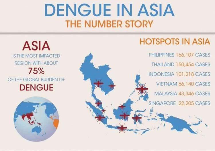 Asia-Dengu