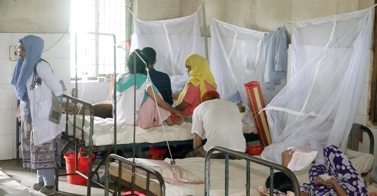barishal-dengue-1