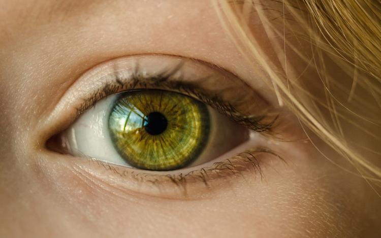 eye-in