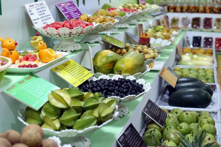 Fruit-Exibition-2
