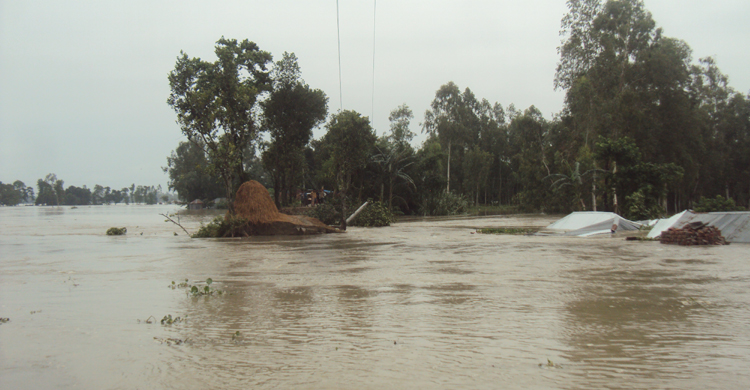 gaibandha-flood