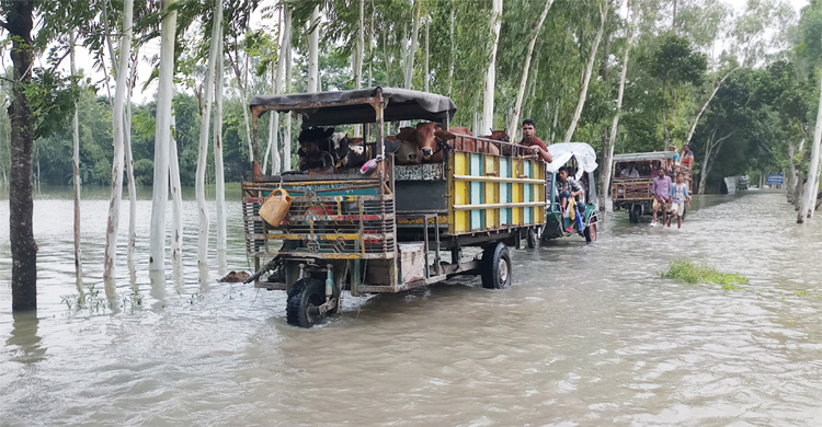 Kurigram-flood