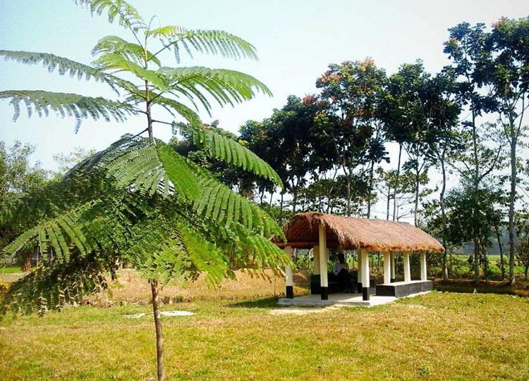 nijum-park-cover