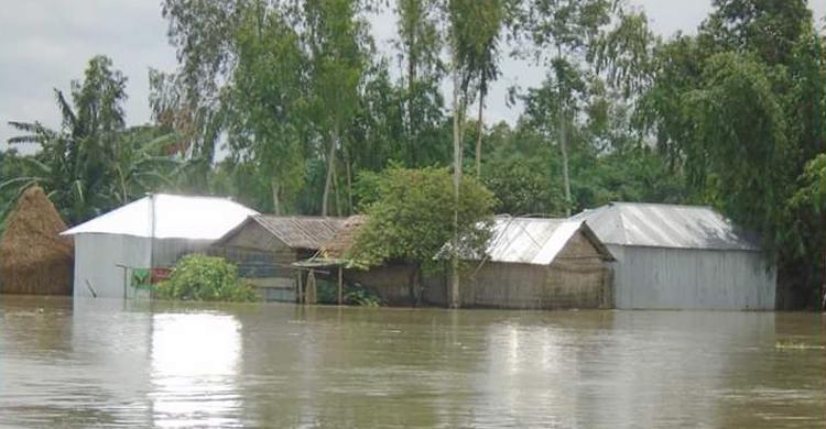 nilfamari-flood