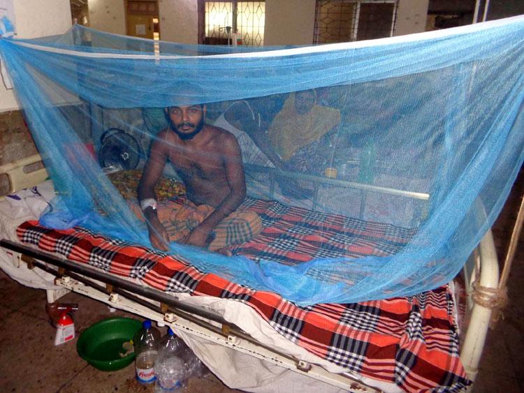 Rangpur-Dengu-News-2