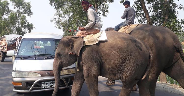 Dinajpur-Extortion