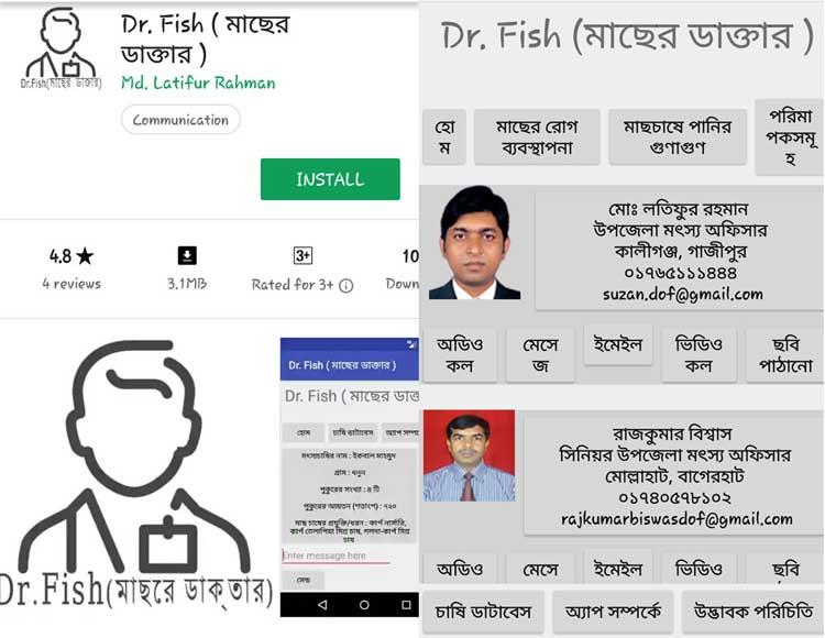 Fish-in.jpg