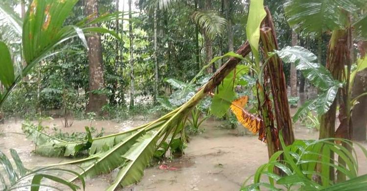 ভারি বর্ষণে বাগেরহাটে পানিবন্দি অর্ধলাখ পরিবার