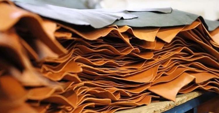 Finshed-Leather