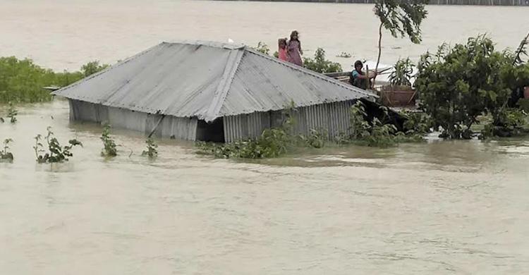 Flood-3