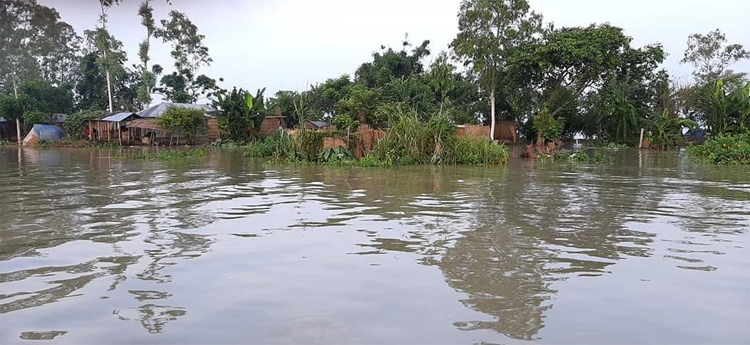 Flood-sirajgonj