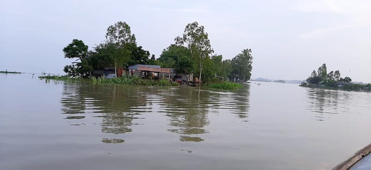 Flood-sirajgonj-1