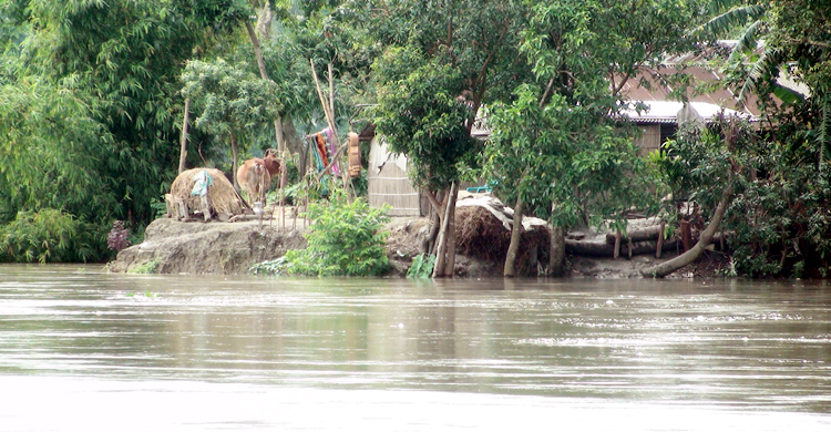 Jamalpur-Flood-1