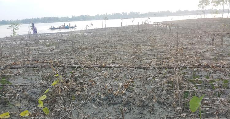 Kurigram-flood03.jpg