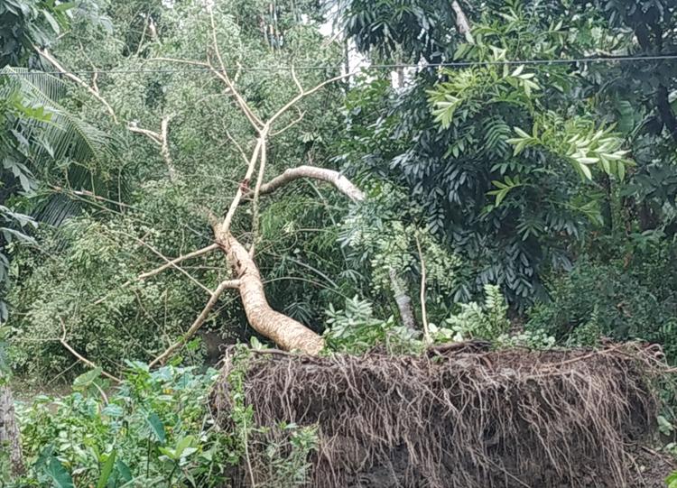 Patuakhali-Storm