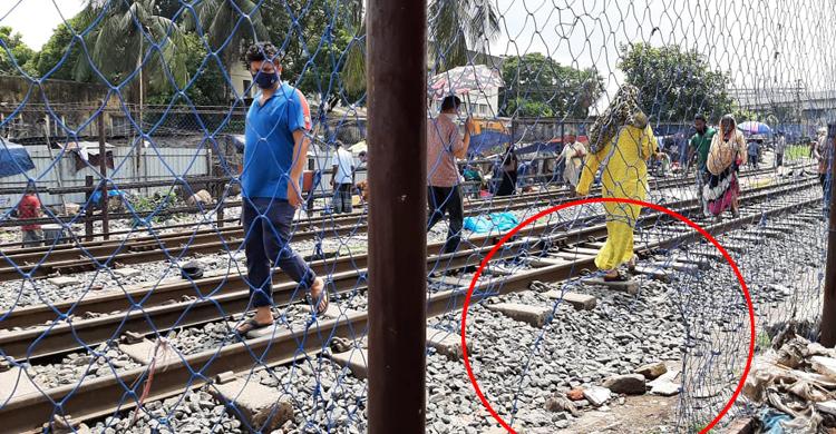rail-fence-(4).jpg