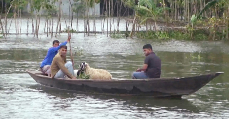 Sherpur-Flood-Update-Pic-1.jpg
