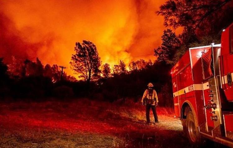 Wildfire-4