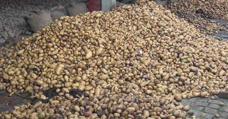 Potato-in-(2).jpg