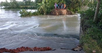 বন্যায় টাঙ্গাইলে ১৪২৯ কিলোমিটার সড়কের ক্ষতি
