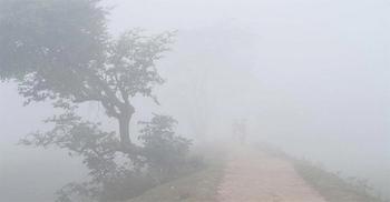 ৬ অঞ্চলসহ রংপুর বিভাগে মৃদু শৈত্যপ্রবাহ