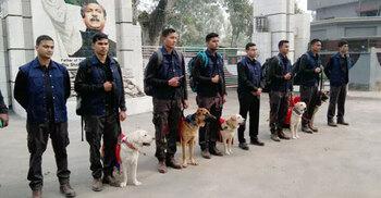 বাংলাদেশ সেনাবাহিনীকে ৫ কুকুর উপহার দিল ভারতীয় সেনাবাহিনী