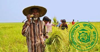 এইচএসসি পাসে চাকরি দিচ্ছে বাংলাদেশ কৃষি ব্যাংক