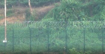 শূন্যরেখায় বিএসএফের বেড়ায় বিজিবির বাধা