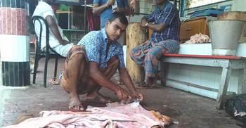 আজও বিক্রি হয়নি কোরবানির চামড়া, বিপাকে ব্যবসায়ীরা