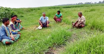 ভারতীয় ভেরিয়েন্টের শঙ্কায় মেহেরপুরের সীমান্তবাসী