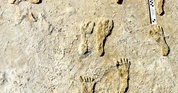 আমেরিকায় মানুষের পা পড়ে ২৩ হাজার বছর আগে?
