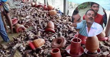 মেঘনার জোয়ারে খামারির সর্বনাশ, পাশে দাঁড়ালেন ছাত্রলীগের রাব্বানী