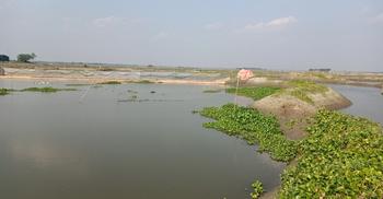 জলমহালে অবৈধ পাটিবাঁধ দিয়ে মাছ ধরছে প্রভাবশালীরা