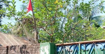 জামালপুরে করোনা সন্দেহে ১০ বাড়ি লকডাউন