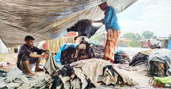 বিধিনিষেধে চামড়া নিয়ে শঙ্কায় রাজশাহীর ব্যবসায়ীরা