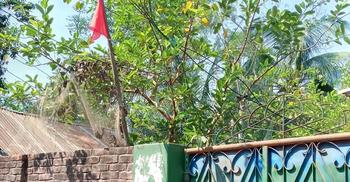 নোয়াখালীতে করোনার লক্ষণ নিয়ে ইতালি প্রবাসীর মৃত্যু, বাড়ি লকডাউন