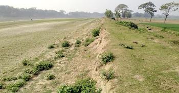 পাউবোর গড়িমসিতে হুমকিতে ৩ হাজার হেক্টর জমির বোরো ফসল