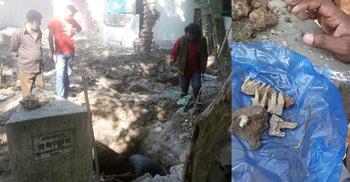 হানাদার বাহিনীর টর্চার সেলের পাশে মিলল মানুষের হাড়গোড়