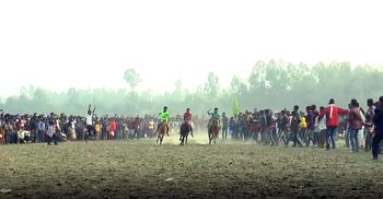 উল্লাপাড়ায় ঘোড়দৌড় প্রতিযোগিতা, প্রথম হলো 'সম্রাট'