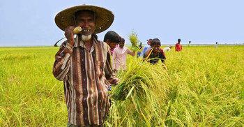 ১ মিনিটে আজকের বাংলাদেশ | ২৫ অক্টোবর ২০২১ | Jagonews24.com