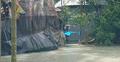 ভোলায় ২৫০ ঘরবাড়ি বিধ্বস্ত, ভেসে গেছে দুই হাজার গবাদিপশু