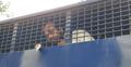 পরিচয় 'গোপন' করে কোর্টে ঢোকার চেষ্টা, আইনজীবী আটক