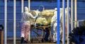 জার্মানিতে করোনায় আক্রান্ত লাখের কাছাকাছি, মৃত্যু ১৬০৭