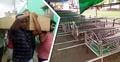 সারি সারি লাশ, জানাজা শেষে কেঁদে কেঁদে প্রিয়জনকে দাফন
