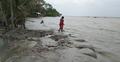 ঘূর্ণিঝড় ইয়াস : মোংলায় তলিয়ে গেছে চারশতাধিক বসতঘর