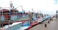 আজও দৌলতদিয়া-পাটুরিয়ায় লঞ্চ বন্ধ, চলছে ফেরি
