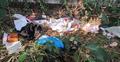 ঢাবি শিক্ষার্থী ধর্ষণ : আইনি সহায়তা দেবে বাংলাদেশ আইন সমিতি